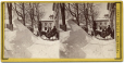MP-0000.3179.1-2 | Beaver Hall Hill Square, Montreal, March 1869 | Photograph | James Inglis |  |