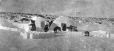 MP-1984.126.164 | Inuit encampment with snow houses, 1920 (?) | Photograph | Anonyme - Anonymous |  |