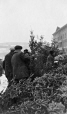 MP-1992.9.1.101 | Selling Christmas trees at Bonsecours Market, Montreal, QC, 1926 | Photograph | Robert Bruce Bennet |  |