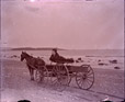 1989.181.11 | Horse and Express Wagon with Driver at Bayshore near Seaside Park, Saint John, New Brunswick | Photograph | Frederick Doig, Canadian, 1875-1949 |  |
