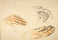1992.14.25 | Study of Hands: Mme Serge Roche ? | Drawing | Camille Roche |  |