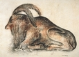 1992.14.26 | Antelope | Drawing | Camille Roche |  |