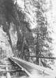 1864   Flume   Photograph   Philip T. Timms     