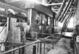 3319 | Robert Dollar Lumber Mill | Photograph | Elizabeth J. Melliday |  |
