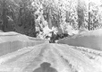 3470 | Automobile on Grouse Mountain Highway | Photograph | Jack Wardlaw |  |