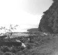 3568 | Mouth of Seymour River? | Photograph | John Holdcroft |  |