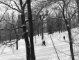 M2001.60.2 | Mount Royal Park, Montreal, QC, 2001. After Notman (VIEW-2551) | Photograph | Andrzej Maciejewski |  |