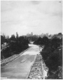 I-22708.1 | Timber slide, Ottawa, ON, 1866 | Photograph | William Notman (1826-1891) |  |
