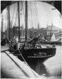 I-48461.1 | Shipping, St. John harbour, NB, 1870 | Photograph | William Notman (1826-1891) |  |