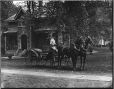 II-107272 | Mrs. Paul's horses and carriage, Montreal, QC, 1894 | Photograph | Wm. Notman & Son |  |