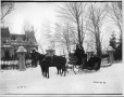 II-109222 | Mr. George Hope's sleigh and pair, Dorchester Street, Montreal, QC, 1895 | Photograph | Wm. Notman & Son |  |