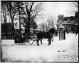 II-109223 | Mr. George Hope's sleigh and pair, Dorchester Street, Montreal, QC, 1895 | Photograph | Wm. Notman & Son |  |