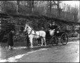 II-112997 | Miss Linton's horses and cart, Montreal, QC, 1895 | Photograph | Wm. Notman & Son |  |