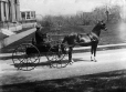 II-124757.0.1 | Horse and carriage for Miss McIntyre, copied 1898 | Photograph | Anonyme - Anonymous |  |