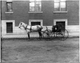 II-126243 | Miss Eadie's horse and carriage, Montreal, QC, 1898 | Photograph | Wm. Notman & Son |  |