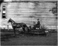 II-129809 | Mr. Canniff in carriage, Montreal, QC, 1899 | Photograph | Wm. Notman & Son |  |