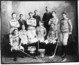II-133942.0 | Shamrock hockey team, Montreal, QC, 1899 | Photograph | Wm. Notman & Son |  |
