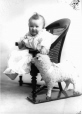 II-137104 | Baby Pangman with toy sheep, Montreal, QC, 1901 | Photograph | Wm. Notman & Son |  |