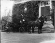 II-138291 | Andrew Allan's horses and carriage, Montreal, QC, 1901 | Photograph | Wm. Notman & Son |  |