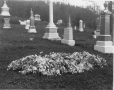 II-142107 | Mr. Baker's lot in cemetery, Montreal, QC, 1902 | Photograph | Wm. Notman & Son |  |