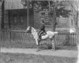 II-146504 | Mr. Riley and horse, Montreal(?), QC, 1903 | Photograph | Wm. Notman & Son |  |