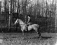 II-152480 | Andrew Allan and horse, Montreal, QC, 1904 | Photograph | Wm. Notman & Son |  |