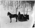 II-153978 | Mr. Riggs and family in sleigh, Montreal, QC, 1905 | Photograph | Wm. Notman & Son |  |