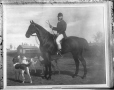 II-170254   Painting of Alfred Baumgarten on horseback, copied for A. E. Ogilvie in 1908   Photograph   Wm. Notman & Son     