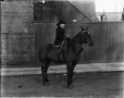 II-194871 | Miss Breakey and horse, Montreal, QC, 1912 | Photograph | Wm. Notman & Son |  |