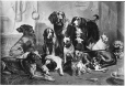 II-19937.1 | Group of dogs for Mr. Sandham, composite, QC, 1875 | Photographie | William Notman (1826-1891) |  |