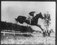 II-206535.0   Steeplechaser, copied for Mr. Masterman in 1914   Photograph   Anonyme - Anonymous     