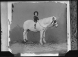 II-237956.0 | Boy on pony (c.1870), copied for R. Collins in 1920 | Photograph | Anonyme - Anonymous |  |