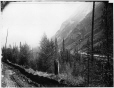 VIEW-1359.1 | Kicking Horse valley near Varney's works, BC, 1884 | Photograph | William McFarlane Notman |  |