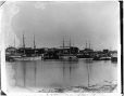 VIEW-1556.2 | Victoria, BC, 1889 | Photograph | William McFarlane Notman |  |