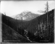 VIEW-1653 | Field Peak sur la ligne du CP, C.-B., 1887 | Photographie | William McFarlane Notman |  |