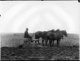VIEW-2028 | Sulky plough on the C.P.R., MB, 1889 | Photograph | William McFarlane Notman |  |