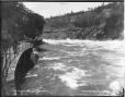 VIEW-2298 | Looking down Whirlpool Rapids, Niagara, ON, about 1890 | Photograph | Wm. Notman & Son |  |