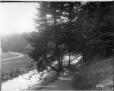 VIEW-3430.1 | National Park, Truro, NS, 1901 | Photograph | Wm. Notman & Son |  |