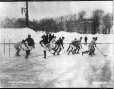 VIEW-3486.0 | Hockey, équipes de l'Université McGill, Montréal, QC, 1902 | Photographie | Wm. Notman & Son |  |