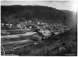 VIEW-3683 | Greenwood, BC, 1903 | Photograph | Wm. Notman & Son |  |