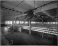 VIEW-4981 | Mule room, Wabasso Cotton Mills, Three Rivers, QC, about 1913 | Photograph | Wm. Notman & Son |  |