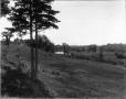 VIEW-5598 | Sur le platin, Wallace River, N.-É., 1916 | Photographie | Wm. Notman & Son |  |