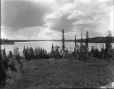 VIEW-5827 | Twin Lake, sous-division Grant du T.C.R., Ont., 1916 (?) | Photographie | Wm. Notman & Son |  |