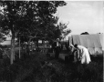 VIEW-5916 | Camping at York Point, PE, 1916-17 | Photograph | Wm. Notman & Son |  |