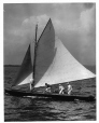 VIEW-6656 | « Alexandra », yacht de course de la coupe Seawanhaka, club de yachting Royal St. Lawrence, Dorval, QC, 1905 | Photographie | Wm. Notman & Son |  |