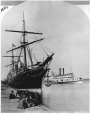 VIEW-813.1 | Ocean and river steamers, Montreal, QC, about 1878 | Photograph | Notman & Sandham |  |